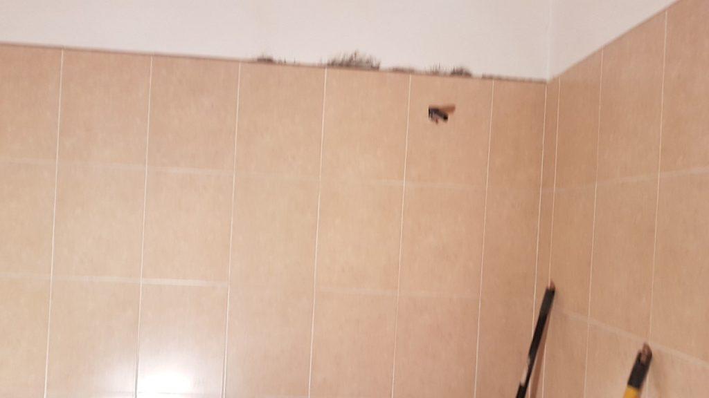 20170410 103616Medium 1024x576 - Renovierung des Badezimmers in der Wohnung
